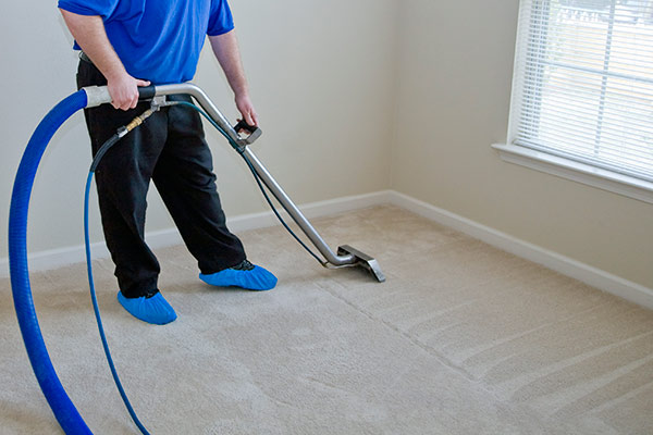 carpet cleaning norfolk and suffolk